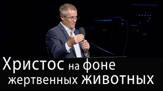 Христос на фоне жертвенных животных. Проповедь Александра Шевченко