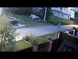 Под Новосибирском овчарка порвала и сломала руку 49-летней женщине