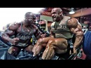 Bodybuilding Motivation - No Time To Waste