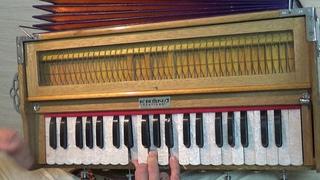 108 мелодий екаетринбургских харинам. Влияние минора на настроение харинамы. Гаджа Ханта дас
