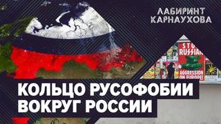 Кольцо русофобии вокруг России   Обострение в странах СНГ   Литовский майдан   Лабиринт Карнаухова