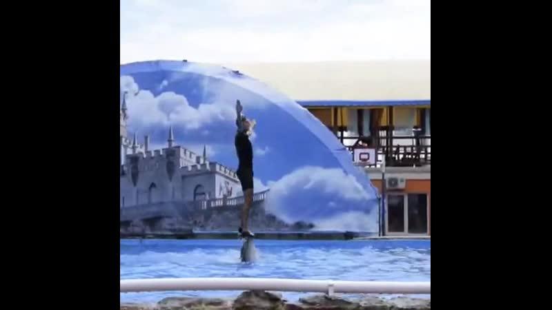 Дружба человека и дельфина в Театре морских животных Акватория