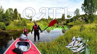 Река Оять летняя. Без воды, но с рыбалкой :)) 26-30 июня 2019 г.