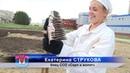 Экскурсия ССО на первый реактор А Аннушка и работа на объектах ПО Маяк