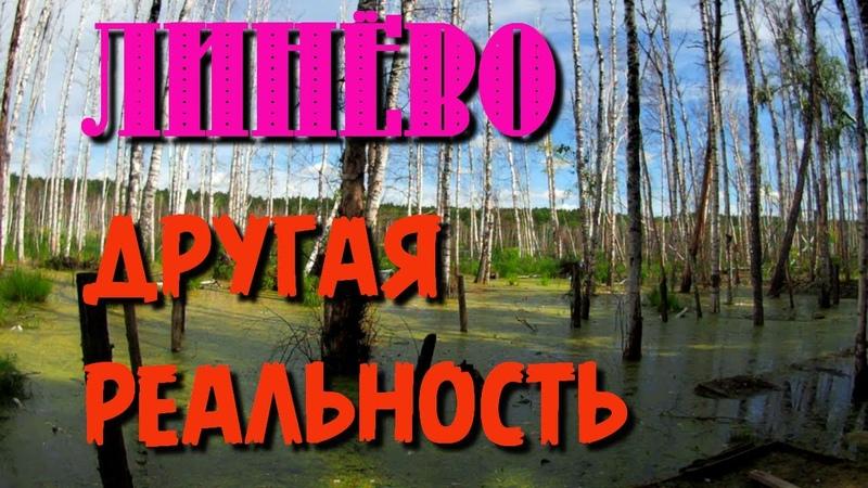 137 Озеро Линёво Вода наступает Озеро Данилово погружаюсь под воду