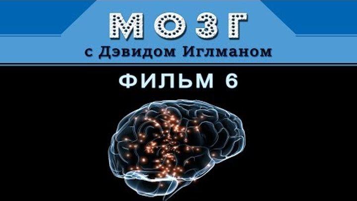 Мозг с Дэвидом Иглманом Кем мы станем Фильм 6 заключительный HD 720p