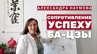 Курс Ба-Цзы   Сопротивление успеху и Самонаказание Лошади в Бацзы   Александра Наумова