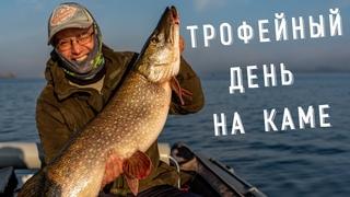 Трофейная рыбалка на Каме - щуки на 8000, судаки на 7000. На что берут крупные щуки и судаки осенью