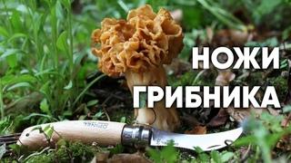 Ножи грибника