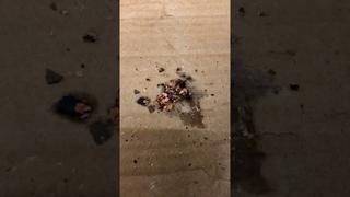 Промывка радиатора отопителя (жара 100%)