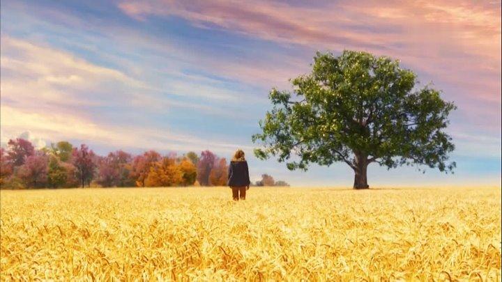 Милые кости The Lovely Bones 2009 США Великобритания фэнтези триллер драма Сирша Ронан Стэнли Туччи Марк Уолберг