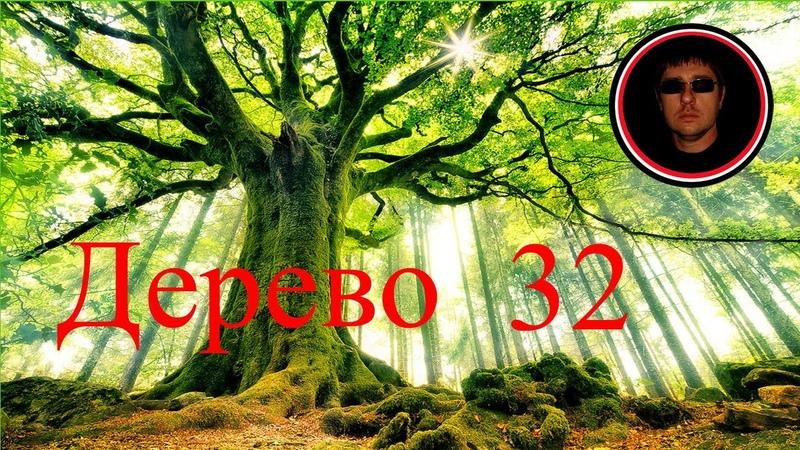 Просто так Дерево 32 генеалогия родословная