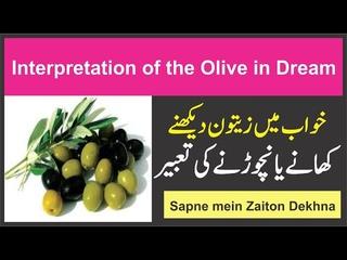 Interpretation of the Olive in Dream    Khwab mein Zaitoon Dekhne Ki Tabeer    خواب میں زیتون دیکھنا