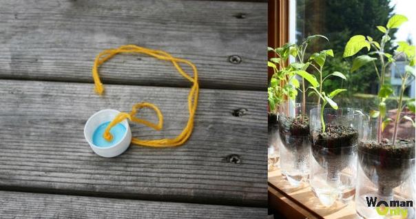 Горшки для растений с самополивом