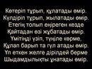 Nurbol Panaev, 30 лет, Актобе, Казахстан