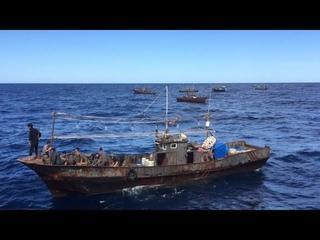 Как северокорейские рыбаки грабят иностранные воды