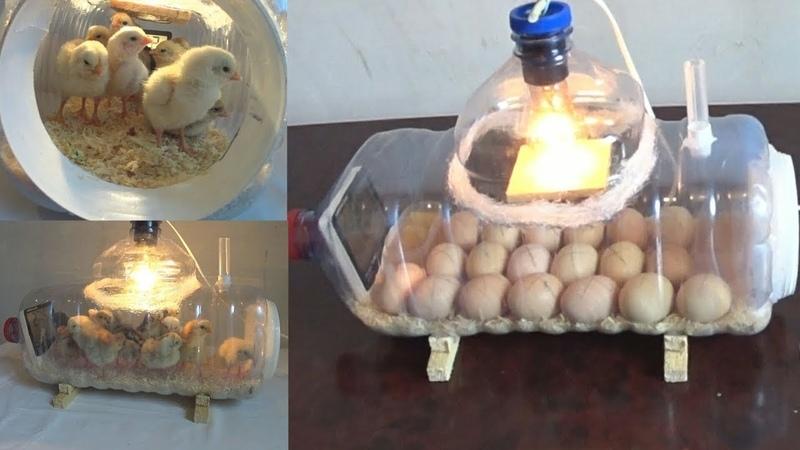 How to make a home incubator and open chicks very easy Como hacer una incubadora casera