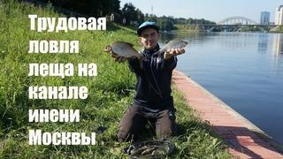 Трудовая ловля леща на канале имени Москвы