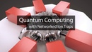 What is an Ion Trap Quantum Computer?