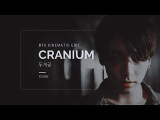 CRANIUM ( 두개골 ) BTS CRIMINAL AU