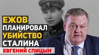 Ежов готовил переворот, поэтому НКВД раздул массовые репрессии в 1937-1938 году. Евгений Спицын