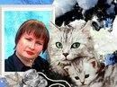 Личный фотоальбом Кати Королевой