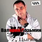 Обложка Тобои заболел - Валерий Козьмин