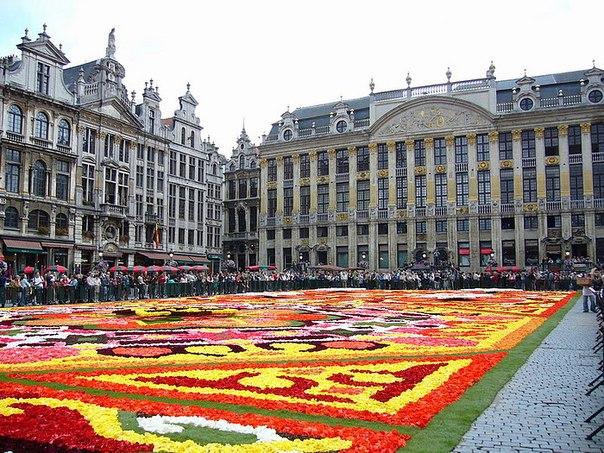 приспособлены картинки бельгия турция народной одежде
