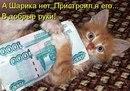 Фотоальбом человека Ильи Ситникова