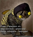 Фотоальбом Сергея Андреева