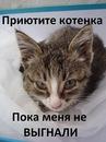 Фотоальбом Катерины Зориной-Беликовой