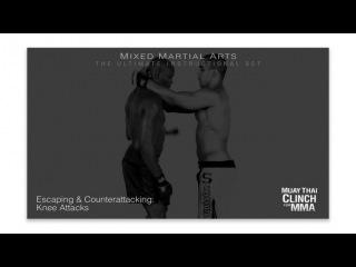 Anderson Silva - Muay Thai Clinch For MMA (Part 1)