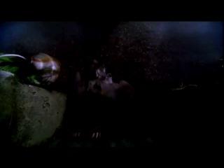 Промо-ролик 3х05 (Гоори, ведьма, гори)