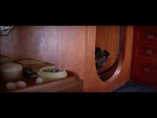 Николь Кидман (Nicole Kidman)- Мертвый штиль