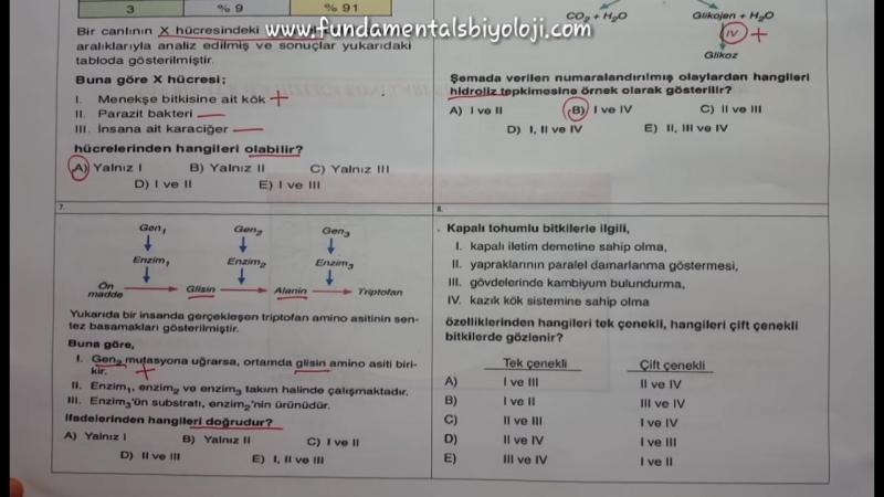 YGS Biyoloji Denemesi 2