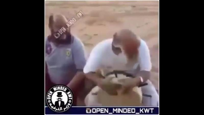Instagram video by DijwAr Jan_BLTe0e9j5TD - MP4