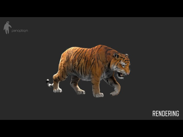 CGI VFX Breakdowns : Making of Tiger for Lilyhammer - by Panoptiqm | TheCGBros