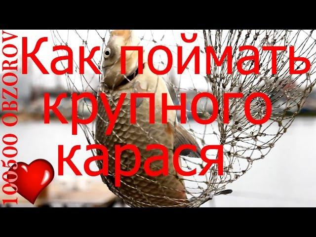 Рыбалка на карася Как оснастить донную удочку Донка
