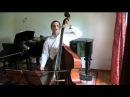 Beethoven Symphony 5 Mvts 2 3 Double Bass Tutorial Master Class vol 3 Felix F J Maiwald