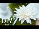 DIY Hübsche Dahlien aus Papier selber machen Deko Kitchen