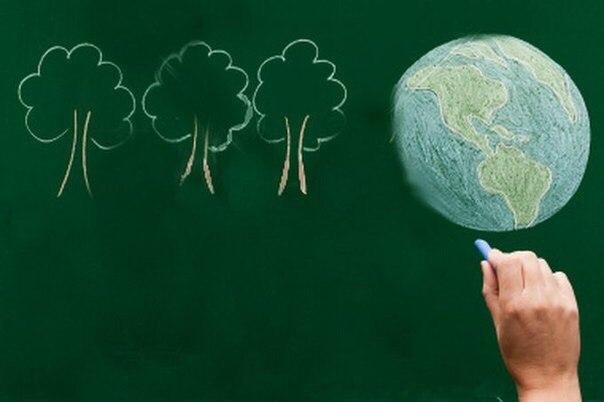 экологический урок картинки своем хозяйстве