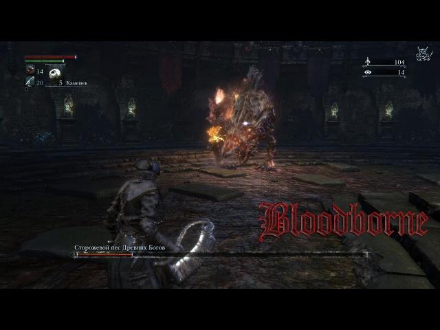 Bloodborne 8 Сторожевой пес Древних Богов