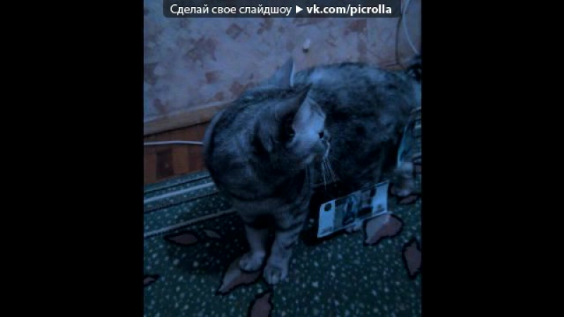 «С моей стены» под музыку Torrent feat. Kraddy - Android Porn (Vatakat Edition). Picrolla