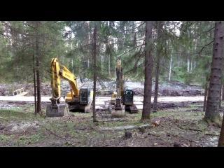 Охта-парк. Строительство на землях лесного фонда и вырубка деревьев