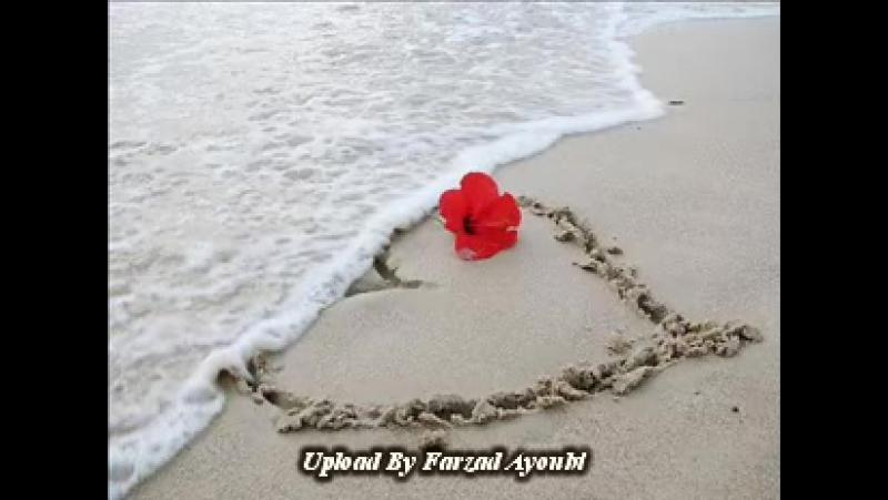 Hojat Dorvali Ay Divooneh New Song Lovely