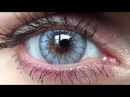 Desio Innocent White Coloured Contact Lenses with HD Closeups
