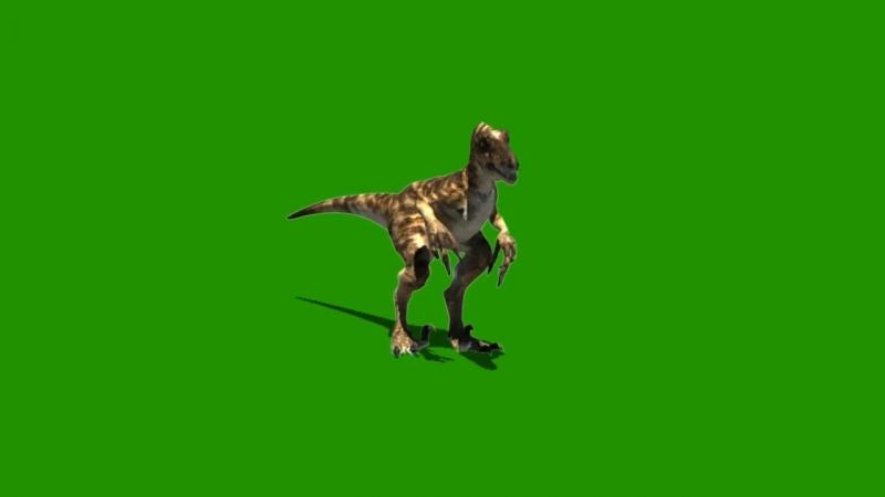 Jurassic World Dromaeosaurid Raptor Theropod Dinosaur Green Screen