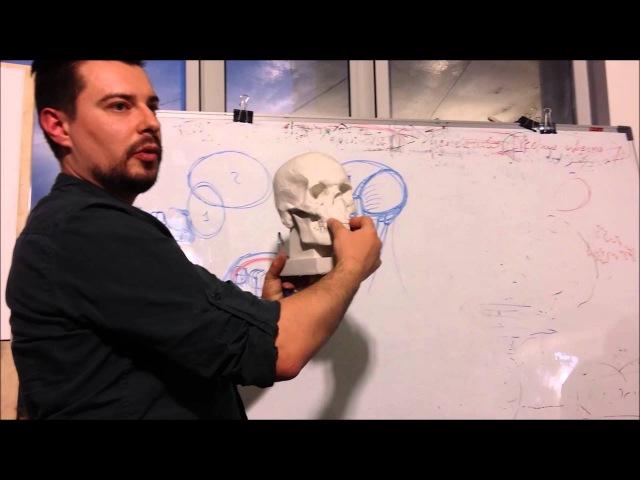 Строение черепа. Урок рисунка Андрея Самарина.