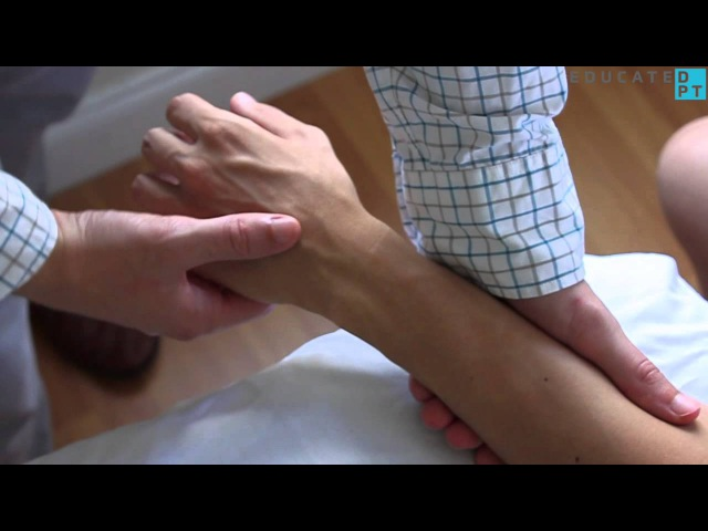 Wrist Extension (with Radial or Ulnar Deviation) MMT