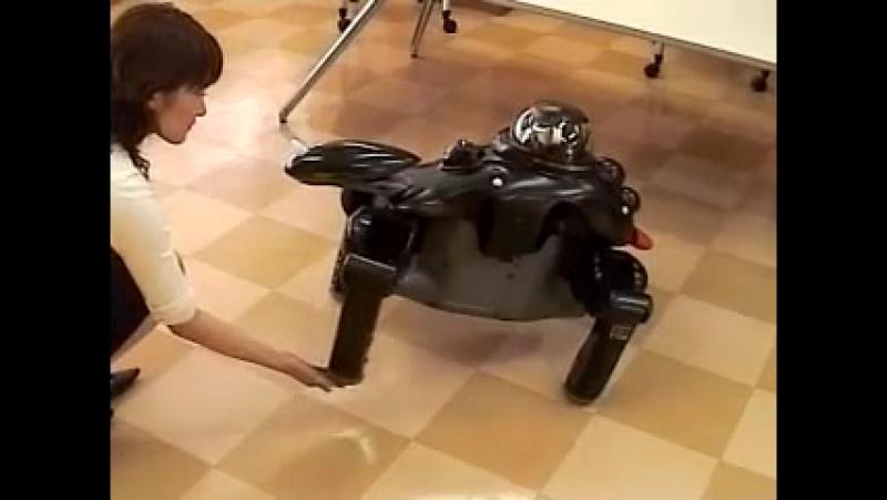 Робот Банрю